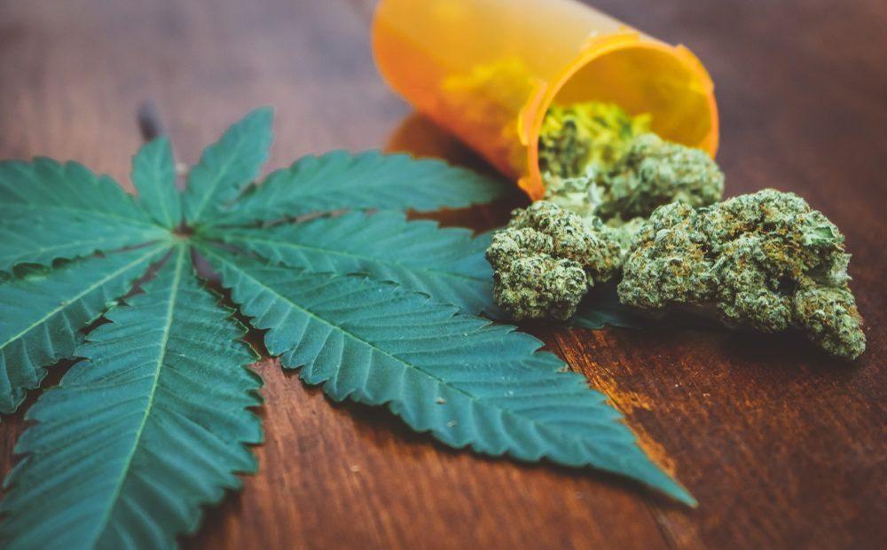 Marijuana buds with leaf on table