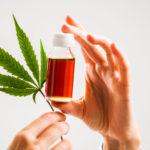 History of Medical Weed