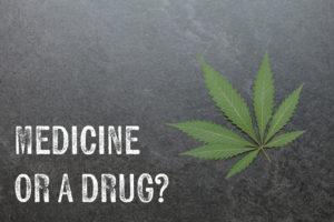 weed is not dangerous