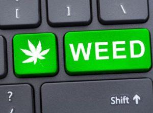 Learning about marijuana