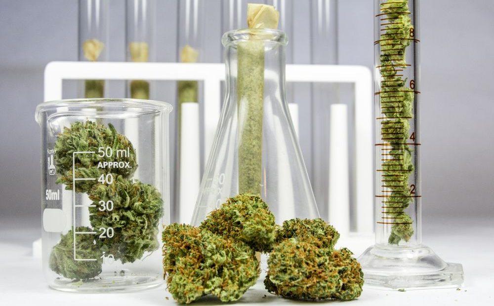 The Increasingly Legal, Medical and Recreational Use of Marijuana