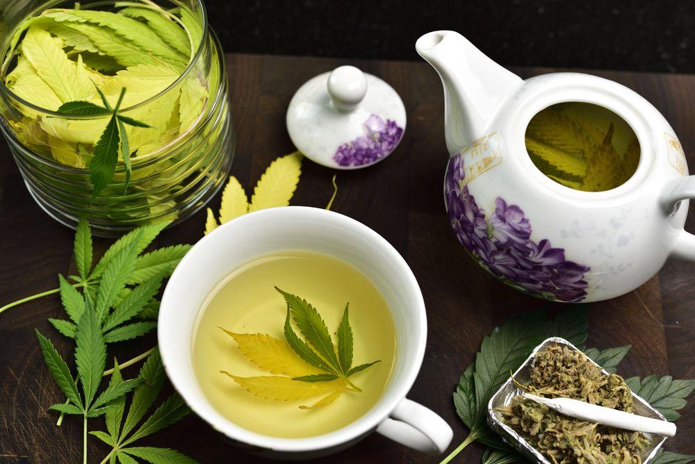 making marijuana leaf tea