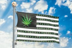 Legalization of cannabis in US