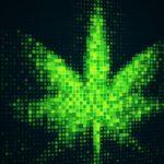 Learn About Marijuana E-Learning Community