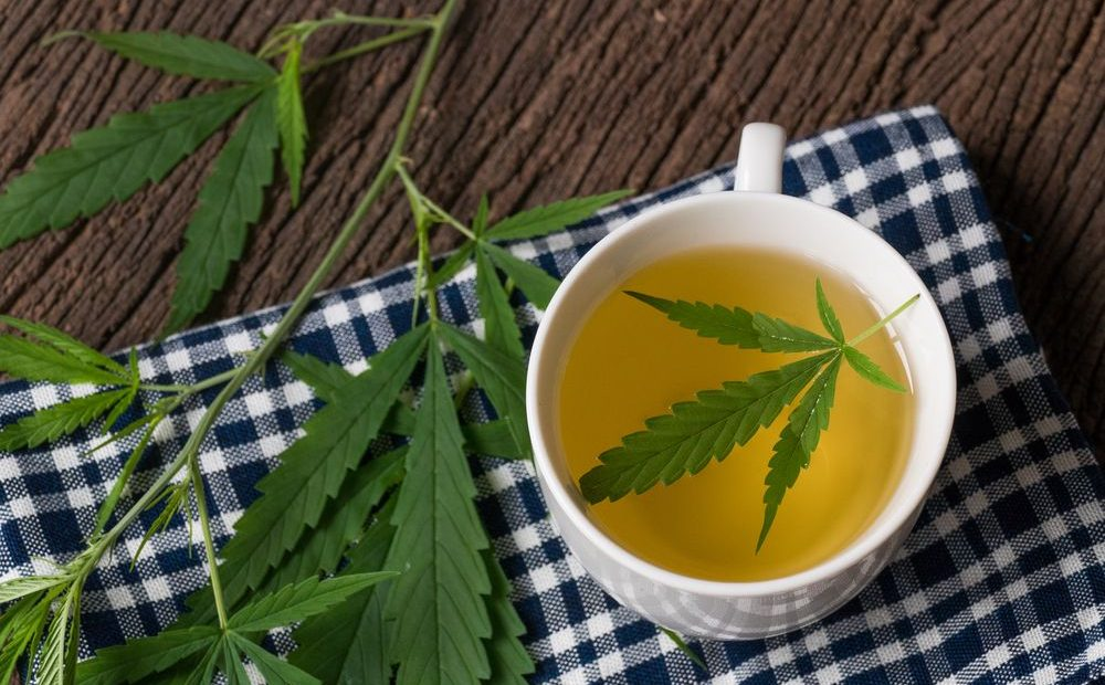 Guide Making Hemp Marijuana Tea
