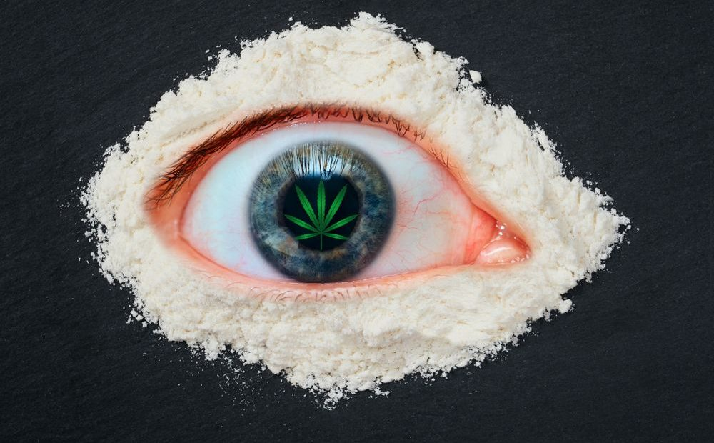 Top Reasons Why Marijuana Is Anathematized