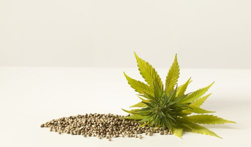 Hemp seeds are also rich in amino acids, and they contain all of them, including the ones that your body can't naturally produce