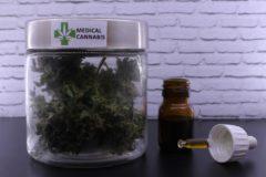 Medical Marijuana Has NO Public Health Risks
