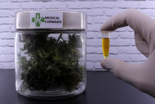 all states are on the right track when it comes to legalizing medical weed