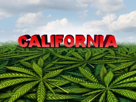 What You Need to Know about Marijuana Legalization in California