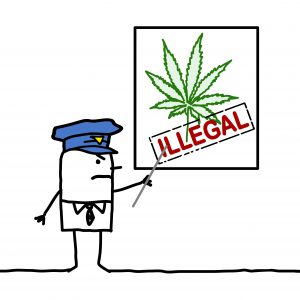 The Cannabis Law in Berlin