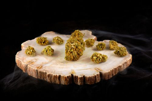 Cannabis experts report that about 779 marijuana strains exist