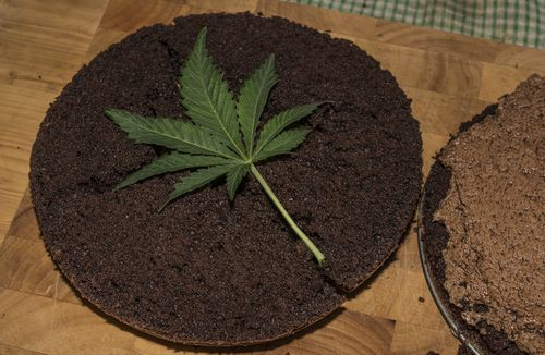 prepping your own weed-infused space cakes is effortless